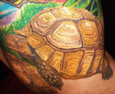 Bobby Stanley's Tortoise Tattoo - all art was applied by Bill Liberty of
