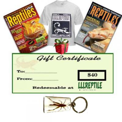 Lll reptiles coupons