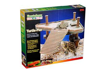 Turtle Tank Supplies Glass Turtle Tanks Can Be Completed